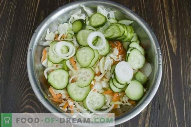 Kohlsalat für den Winter mit Gurken und Tomaten
