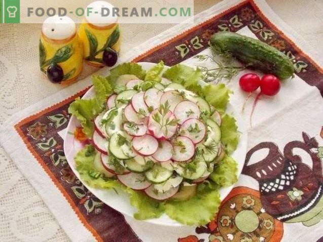 Frühlings-Schichtsalat