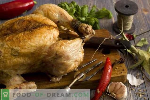 Gesalzenes Huhn