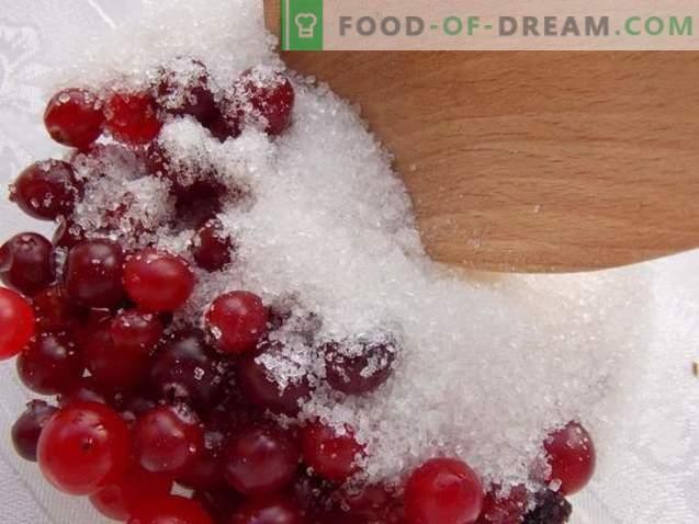 Cranberries, gerieben mit Zucker