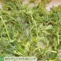 Bereite Grüns für den Winter vor