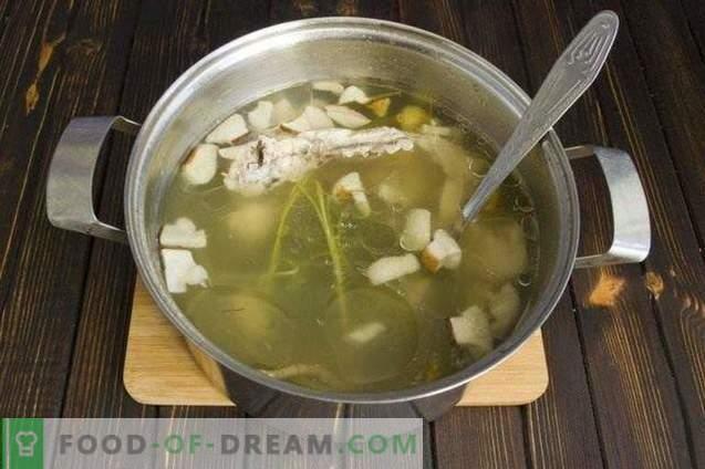 Pilzcremesuppe mit Sahne und Zucchini