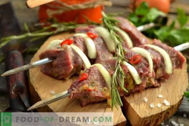 saftige Rindfleischspiesse