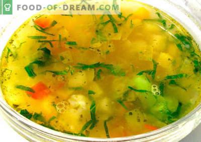 Rastlinska juha - najboljši recepti. Kako pravilno in okusno kuhamo zelenjavno juho.