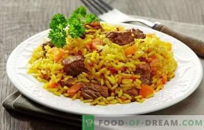 Wie diätetische oder pflanzliche leckere Pilaw in einem Slow Cooker? Auswahl köstlicher Pilaw-Rezepte in einem Multikocher aus verschiedenen Fleisch- oder Fischgerichten