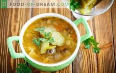 Gurke mit Pilzen - eine aromatische Suppe. Rezepte von einfach bis sehr einfach - wir kochen selbstgemachte Pickles mit Pilzen und fleischlosem Fleisch