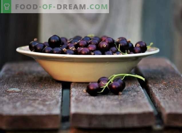 Rezepte der schwarzen Johannisbeere
