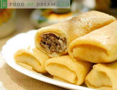 Pfannkuchen mit Fleisch - bewährte Rezepte. Wie man richtig und lecker Pfannkuchen mit Fleisch kocht.