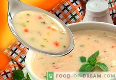 Suppen für Kinder - bewährte Rezepte. Wie man richtig und lecker Suppen für Kinder kocht.