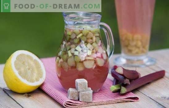 Rhabarber-Kwas ist ein ideales Getränk für einen heißen Tag. Die besten Rezepte für Rhabarber-Kwas mit Gewürzen, Minze, Zitrone, Honig