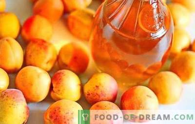 Braga aus Aprikosen - wie macht man es richtig? Zutaten, Rezepte und Empfehlungen für die Zubereitung von selbst gebackener Aprikose