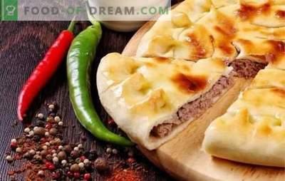 Pastete mit Fleisch im Ofen: ein schrittweises Rezept für eine herzhafte und schmackhafte Gaumenfreude. Mit Schritt-für-Schritt-Rezepten ist das Kochen von Fleischkuchen im Ofen einfach!
