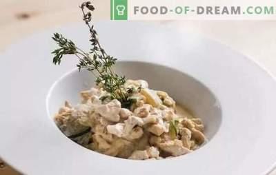 Frikassee: klassische Rezepte mit Hähnchen, Kaninchen, Champignons, Spargel. Wie man Frikassee nach klassischen Rezepten schnell kocht
