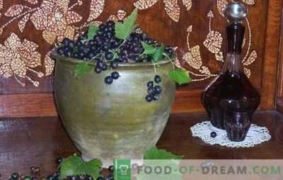 Wie macht man Wein aus der schwarzen Johannisbeere? Fünf Rezepte für einfache hausgemachte Johannisbeerweine: jung, Dessert, Likör