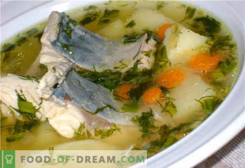 Makrelensuppe - die besten Rezepte. Wie man richtig und lecker Suppe und Makrele kocht.