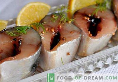 Würzige Makrele - die besten Rezepte. Wie man würzige Makrelen richtig und lecker kocht.