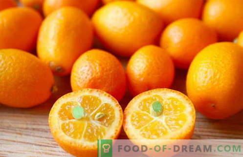 Kumquat - nützliche Eigenschaften und Verwendung beim Kochen. Rezepte mit Kumquat.