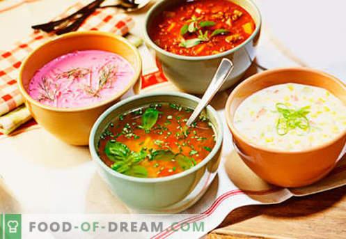 Kalte Suppen - bewährte Rezepte. Wie man leckere kalte Suppen mit Wurst oder Hering kocht