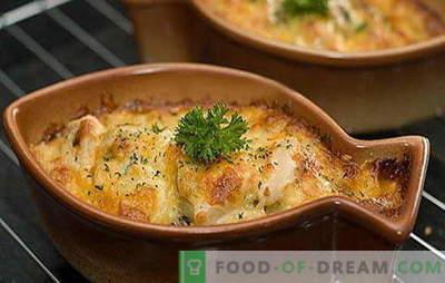 Hecht in Sauerrahm ist ein köstliches Raubtier! Interessante Hechtrezepte in Sauerrahm im Ofen und in der Pfanne: gefüllt mit Kartoffeln
