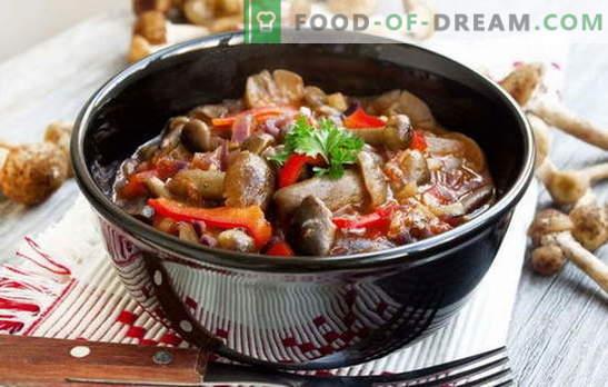 Eintopf mit Pilzen - Überraschungen (Schlachten, Eroberungen, Streiks) mit Aroma! Köstliche Eintöpfe mit Pilzen und Gemüse, Fleisch, Reis, Bohnen