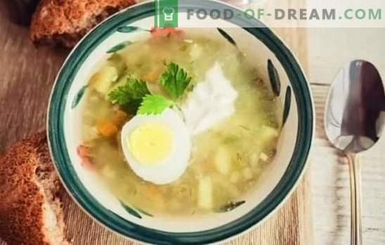Gurke mit Graupen in einem langsamen Kocher - schnell und lecker. Rassolniki mit Gerste in einem langsamen Kocher mit Schweinefleisch, Rindfleisch, Huhn, Pilzen