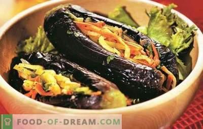 Auberginen gefüllt mit Gemüse für den winterfertigen Snack. Die besten Rezepte für Auberginen gefüllt mit Gemüse für den Winter