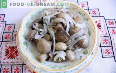Marinierte Champignons zu Hause - köstliche Pilze! Wie man Champignons zu Hause in Essig legt: schnell, lecker