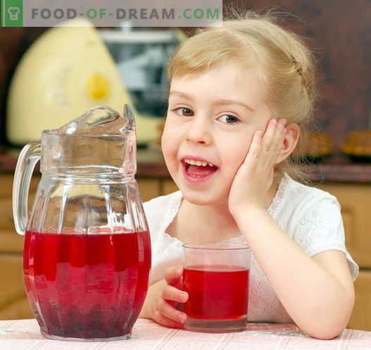 Kompott für ein Kind - die besten Rezepte. Wie man richtig und schmackhaftes Kompott für das Kind macht.