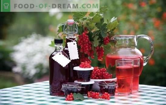 Wein aus Marmelade zu Hause: Eine Million Geschmacksrichtungen! Rezepte für hausgemachten Wein aus Marmelade von kreativen Hausfrauen