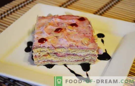 Kuchen in Eile - Fantasieregeln! Die besten Rezepte für Kuchen in Eile: von Hüttenkäse, Keksen, Lebkuchen, Fertiggerichten und Früchten