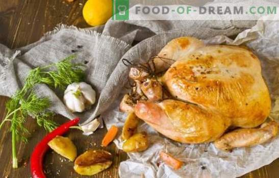 Was Sie zum Abendessen kochen sollten Hühnchen schnell und lecker: von klassisch bis exotisch. Wie kocht man ein Hühnchenessen schnell und lecker?