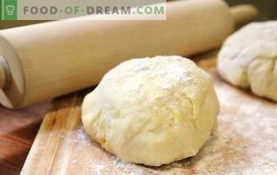 Hefefreier Pizzateig - kein Ausrutscher! Rezepte hefefreier Pizzateig: auf Sauerrahm, Mayonnaise, Kefir und Wasser