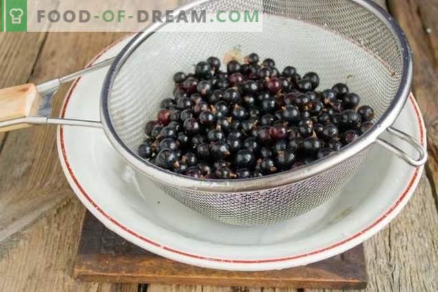 Schwarze Johannisbeere mit Zucker für die