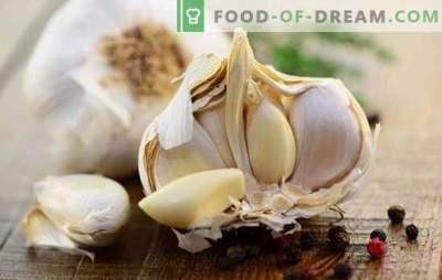 Herzhafte Snacks mit Knoblauch: Zubereitungen und würzige Gerichte für ein festliches Festmahl. Wie man einen leckeren Snack mit Knoblauch zubereitet