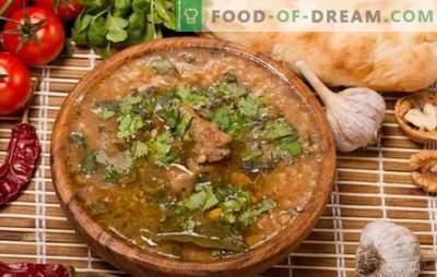 Würziges Lamm Kharcho ist ein klassisches kaukasisches Rezept. Wie man einen klassischen Lamm-Kharcho mit dem Zusatz