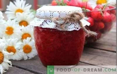 Lieblings-Dessert - Erdbeeren mit Zucker: Rezepte und Geheimnisse der Zubereitung. Erdbeeren mit Zucker - ein Rezept für einen leckeren Sommer in der Dose.