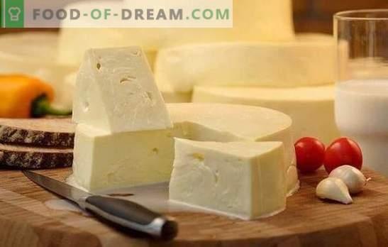 Wie man Suluguni schnell zu Hause kocht: das Rezept für jungen Weißkäse. Zu Hause kochen Sie leichten Suluguni-Käse