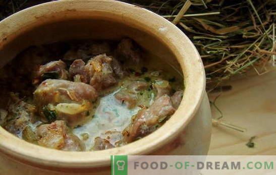 Hühnermägen in Sauerrahm - für Liebhaber von Innereien! Rezepte für Hühnermägen mit saurer Sahne im Ofen, im Slow Cooker, in den Töpfen