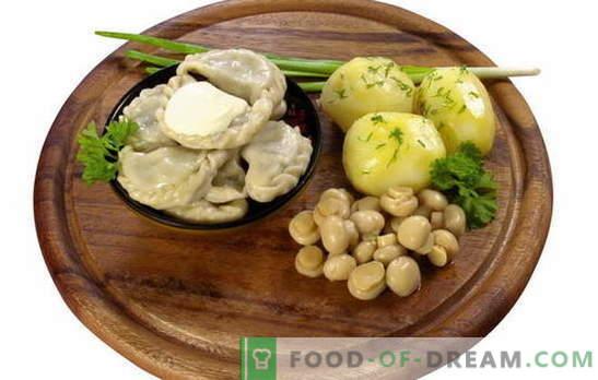 Knödel mit Kartoffeln und Champignons - und kein Fleisch! Eine Auswahl der verführerischsten Rezepte der Knödel mit Kartoffeln und Champignons