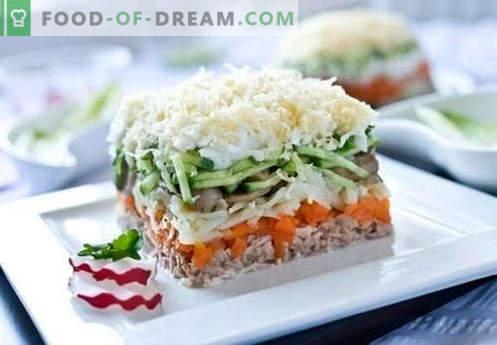 Salat aus rosa Lachs in Dosen - eine Auswahl der besten Rezepte. Wie man richtig und lecker gekochten Salat aus rosa Lachs aus der Dose kocht.