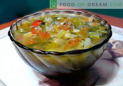 Selleriesuppe - bewährte Rezepte. Wie man richtig und lecker Suppe vom Sellerie kocht.