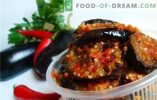 Auberginen in Adjika: Wir kochen nach südlichen Traditionen. Verschiedene Optionen zum Kochen von Auberginen in adjika