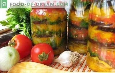 Armenischer Snack für den Winter: lecker, einfach, schnell. Die besten Rezepte des armenischen Snacks für den Winter mit Tomaten, Auberginen, Zucchini, Pfeffer