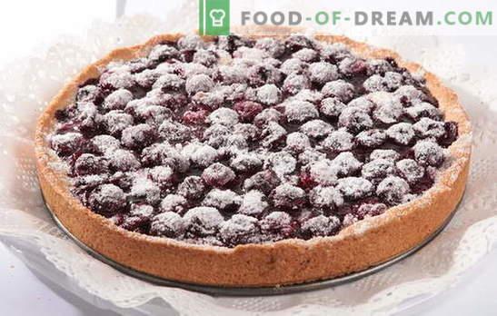 Ein schneller Kuchen in Eile: Früher oder später wirst du ihn brauchen. Nützliche Rezepte für eine schnelle Peitsche