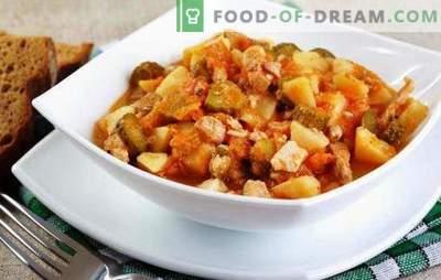 Azu im Slow Cooker - da schmeckt Fleisch! Rezepte verschiedener Grundlagen in einem Multikocher mit Rindfleisch, Lamm, in Tatarisch