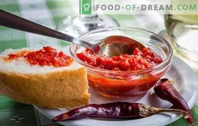 Satsabelsauce ist eine wohlriechende Ergänzung. Variationen von Sauce satsabel von Trauben, Kirschpflaumen, Pflaumen, mit Tomatenmark, Stärke, Nüssen