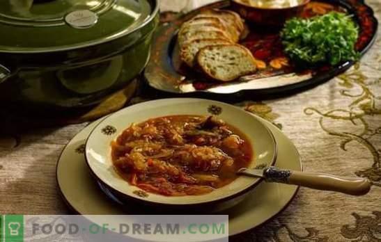 Tägliche Suppe - nach alten Rezepten kochen! Kochtechnologie, Zutaten und verschiedene Variationen des Tageskohls