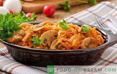 Fastensuppe mit Pilzen ist ein hervorragender Ersatz für Fleisch. Rezepte aus verschiedenen Fastensuppen mit Pilzen: Salate, Suppen, Bigus, Aufläufe