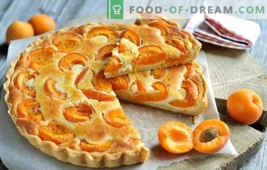 Einfache Aprikosentorte - jeder kann damit umgehen! Aprikosenpasteten im Sommer kochen: einfache Rezepte für alle