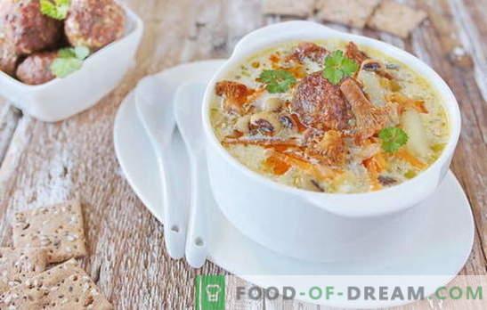 Suppe mit Fleischbällchen - befriedigendes Vergnügen! Verschiedene Rezepte für Suppe mit Fleischbällchen und Bohnen, Nudeln, Pilzen, Gemüse
